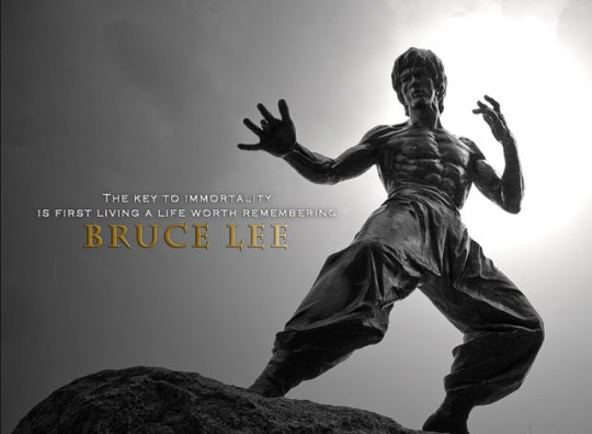 Bruce Lee Immortality
