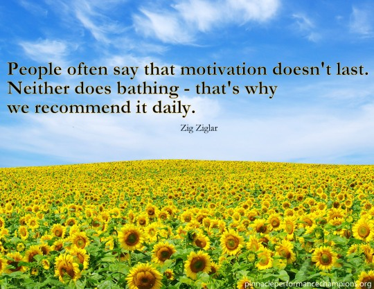 Zig - Motivation Daily