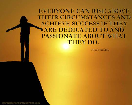 Nelson Mandela Rise Above