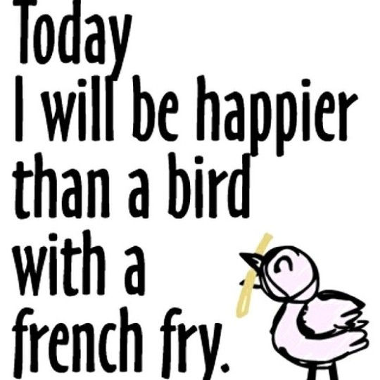 BirdFry