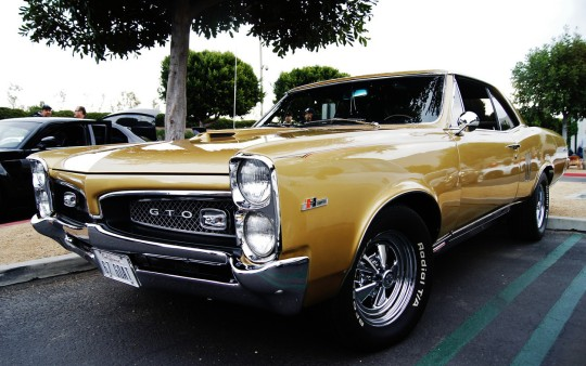 1967 Tiger Gold Hurst GTO